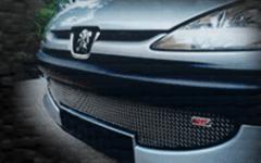 Peugeot 206 @ Naza 206 Bestari
